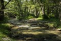 diarizos river cyprus