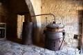 lofou olive press