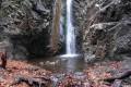 millomeri nature trail