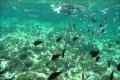 cyprus pernera beach