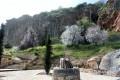 episkopi paphos